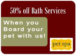 Bath Services Coupon